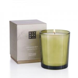 Regular-Candle-Lotus-Secret