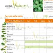Gartenkraeuter_Detailansicht_2