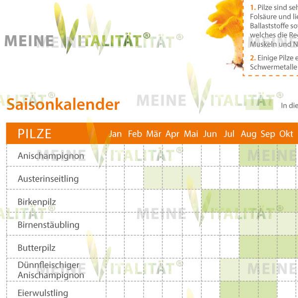 E-Paper – Saisonkalender Pilze | Meine Vitalität Shop ...