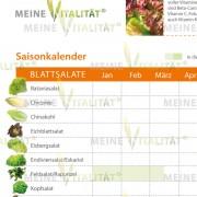 Salat_Detailansicht_2